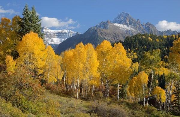 Colorado Fall Foliage 2016